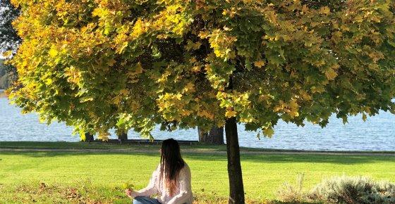 Ciepłe Barwy Jesieni