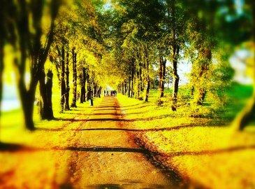 Jesień w Lublinie – 2 noce