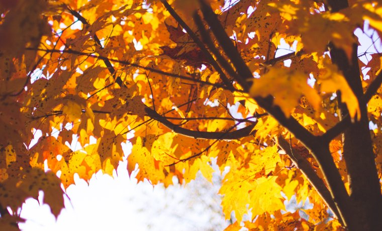 Jesień w górach!