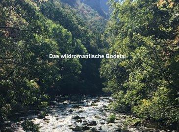 Wandern in der Wanderarena Bodetal - 2 Übernachtungen
