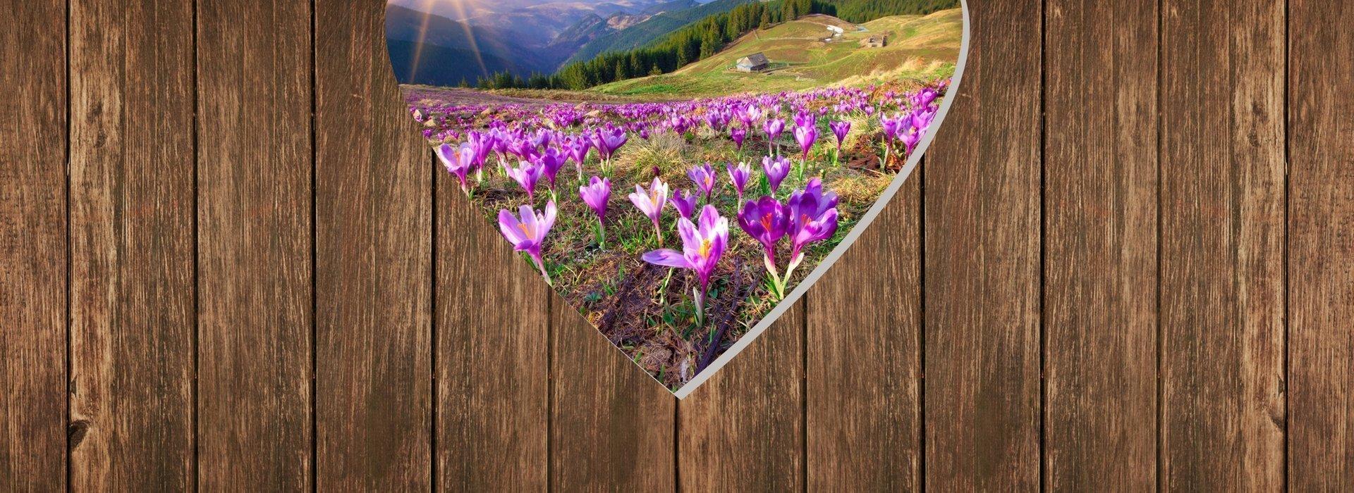 Wiosenny RELAKS - pobyt ze śniadaniem i kolacją