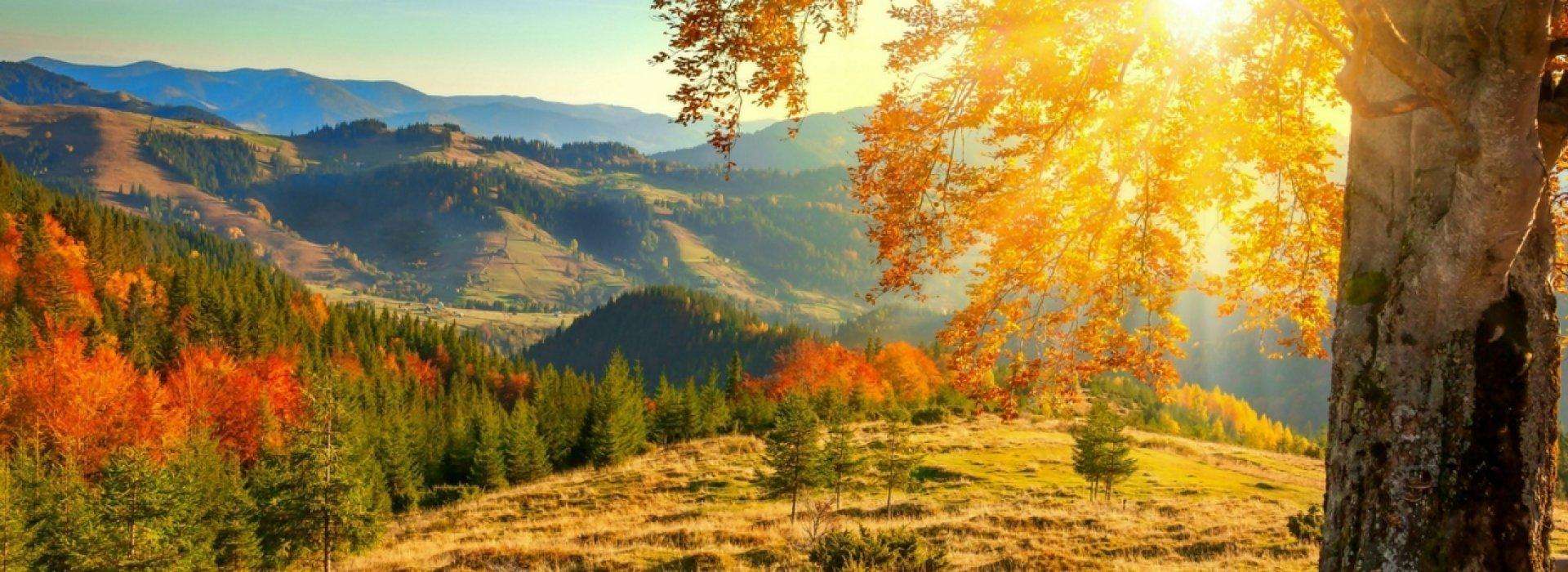 Jesienny WYPOCZYNEK w Beskidach - BB