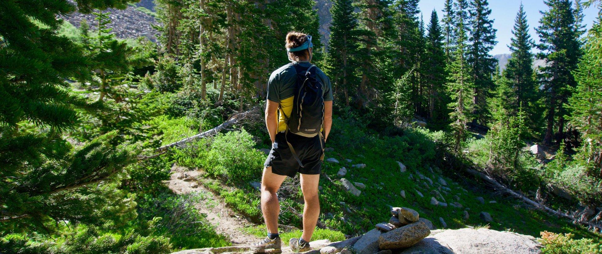 4 Tage Wandern im Schwarzwald