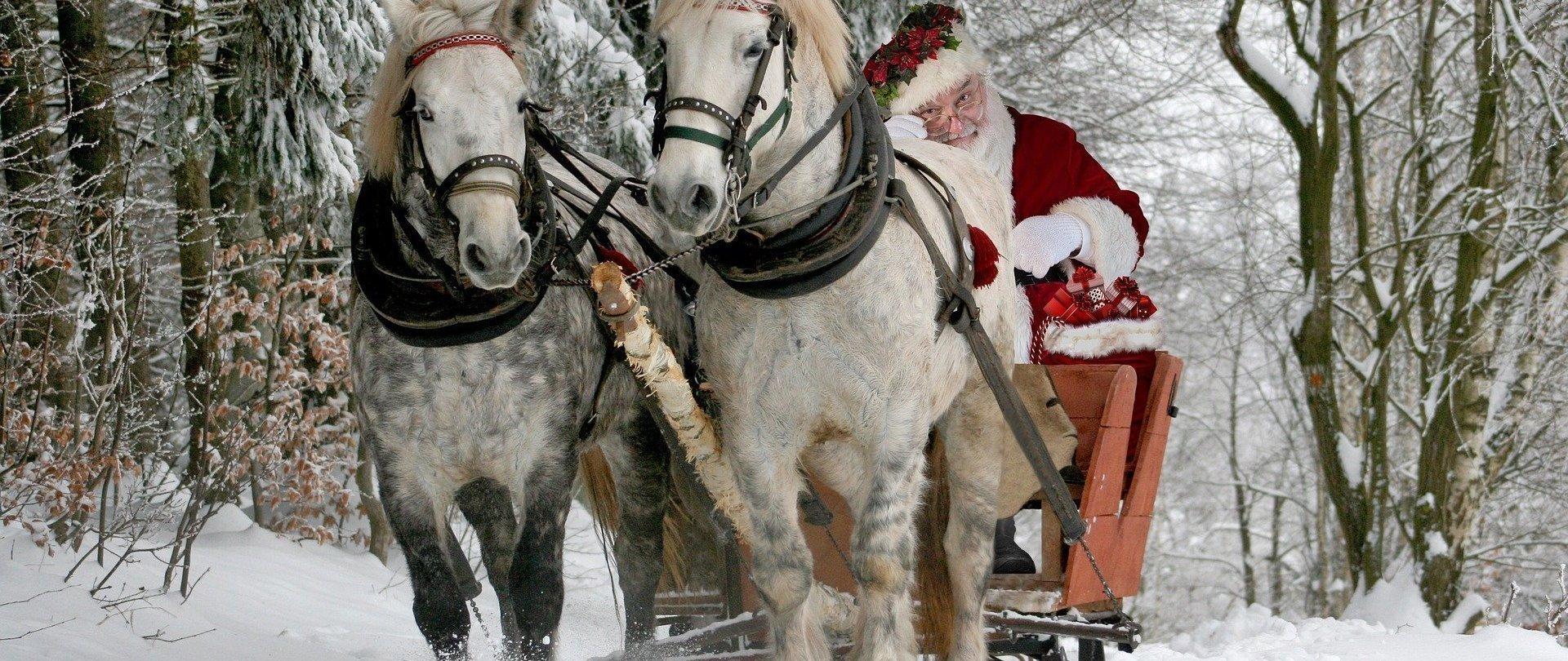 MIkołajki w siodle - weekendowy pobyt dla 2 osób /  4  lekcje jazdy konnej