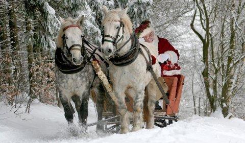 MIkołajki w siodle - weekendowy pobyt dla 4 osób /  8  lekcji jazdy konnej