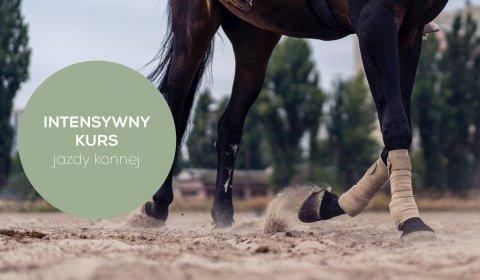 Intensywny kurs jazdy konnej