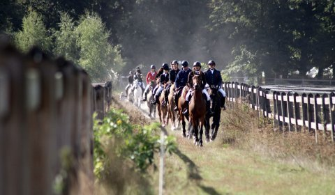 Aktywny listopad  - tygodniowy pobyt dla 2 osób /  24  lekcje jazdy konnej