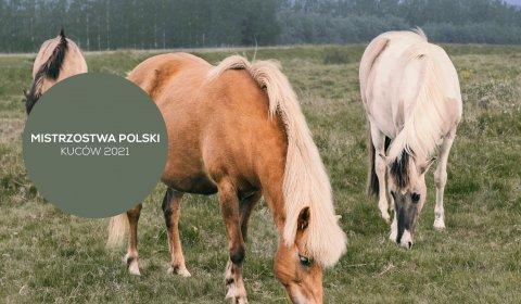 Mistrzostwa Polski Kuców 2021