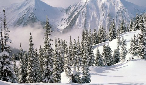 Winter relaxation at the Tatra Mountains