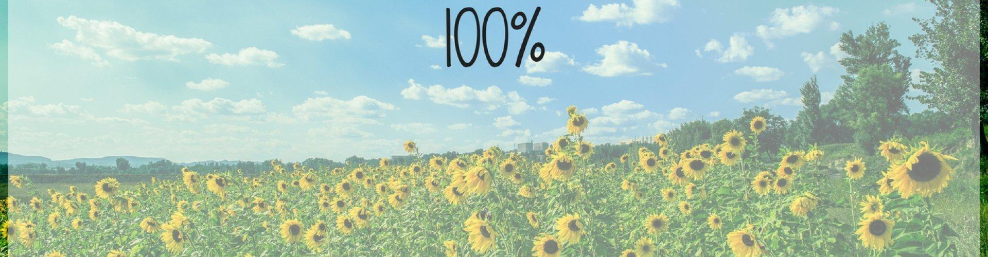 100% Przedpłaty | Oferta bezzwrotna
