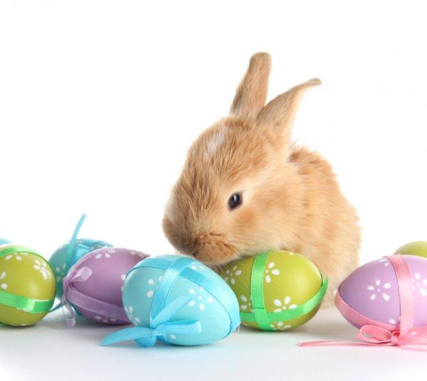 Wielkanoc  -  min. 3 noclegi