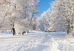 Ferie Zimowe 5 dni
