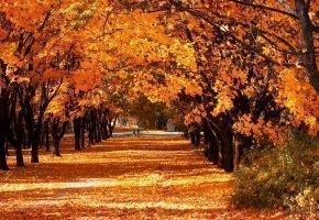 Jesienny Odpoczynek