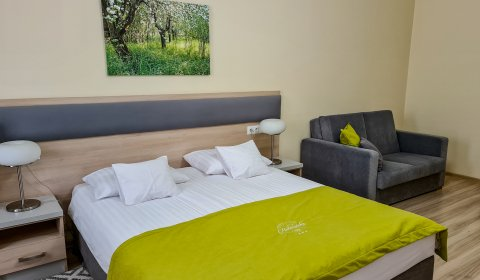 Double KING Room C (additional bed possible)