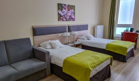 Double TWIN Room (additional bed possible)