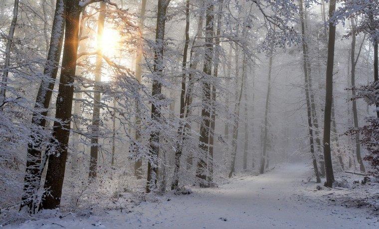 Zimowe Wakacje