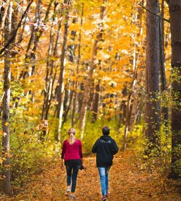 Kolorowa jesień na Mazurach