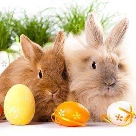 Wielkanoc w Górach
