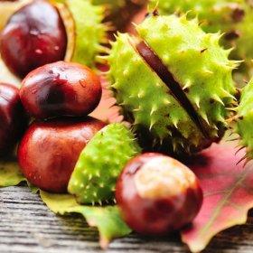 Jesienna Promocja  -  min. 2 noce ze śniadaniem i obiadokolacją