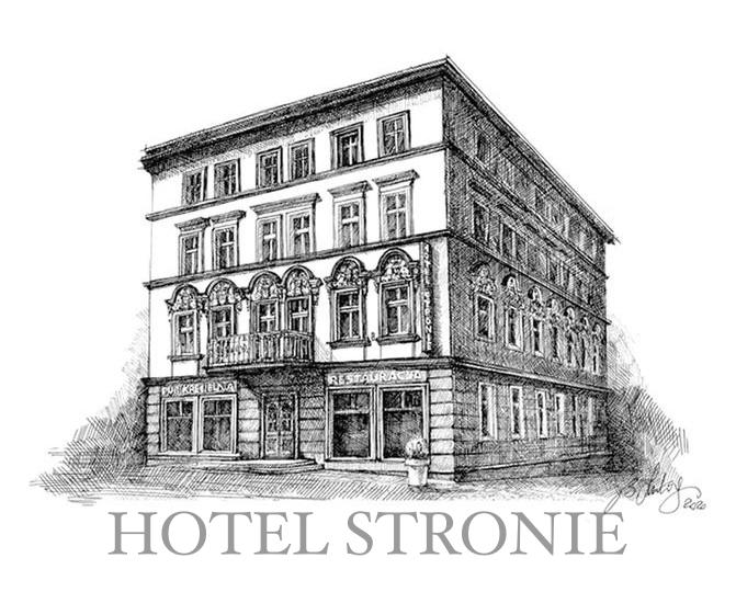 Hotel Stronie**