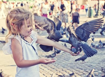 Family Holidays in Krakow