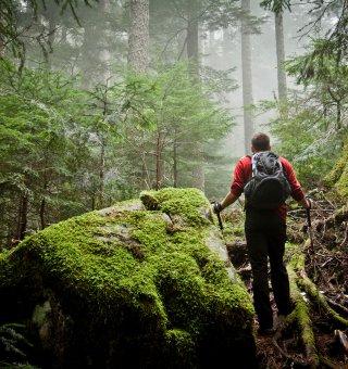 Ferie z Trekkingiem