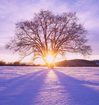 Zima w Karkonoszach - Luty 2021