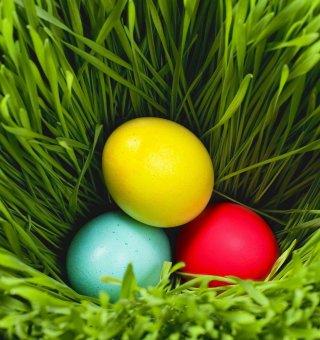 Wielkanoc w Jeleniej Strudze !