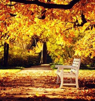 Jesienny Relaks w SPA