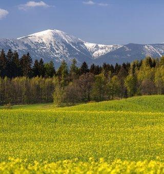 Wiosną w Karkonoszach