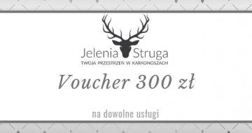 Voucher 300 zł