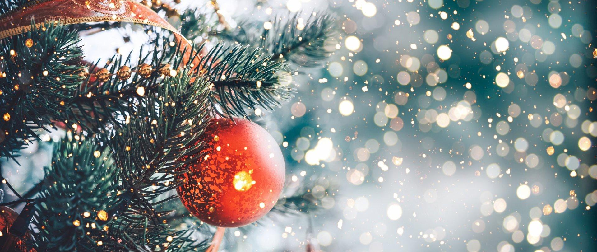 Boże Narodzenie w Lake Hill Resort & SPA 2020