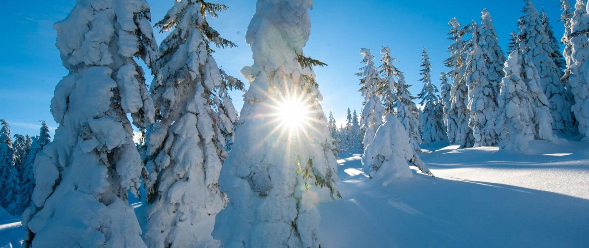 Karkonoska Zima w Lake Hill Resort & SPA
