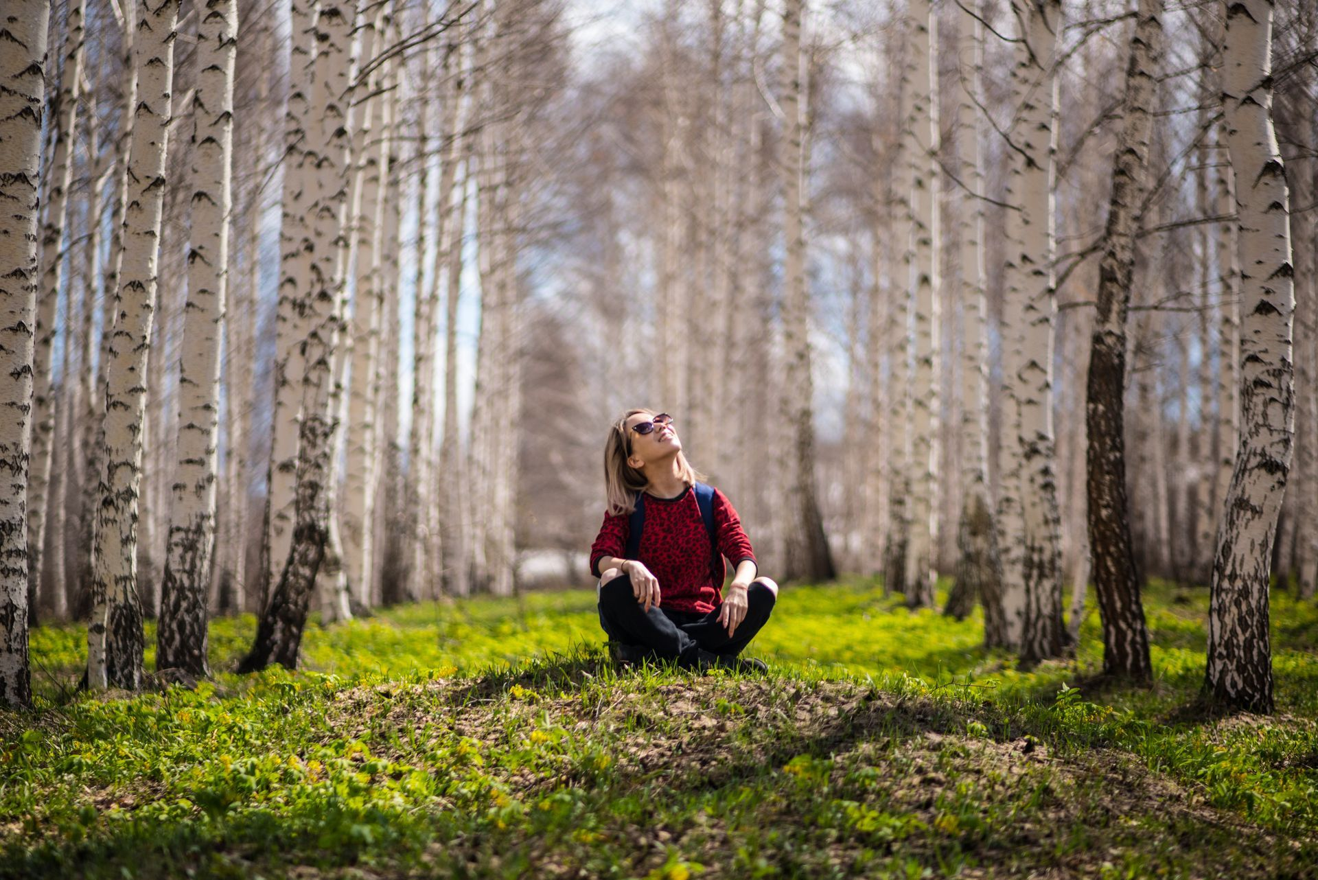 Pobyt w sercu lasu