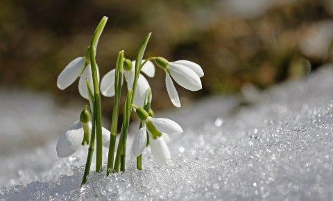 Tatry wiosną -  TANIEJ 20% - min. 2 noce