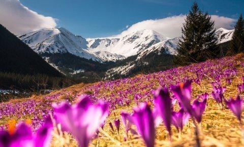Tatry wiosną - w pakiecie 16% - min. 3 noce