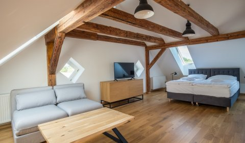 Apartament Premium  w Oficynie