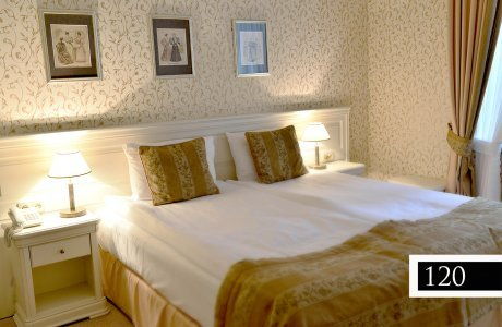 Double Room LUX - Palace
