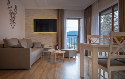 Apartament Górna III