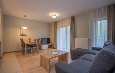 Apartament Górna VI