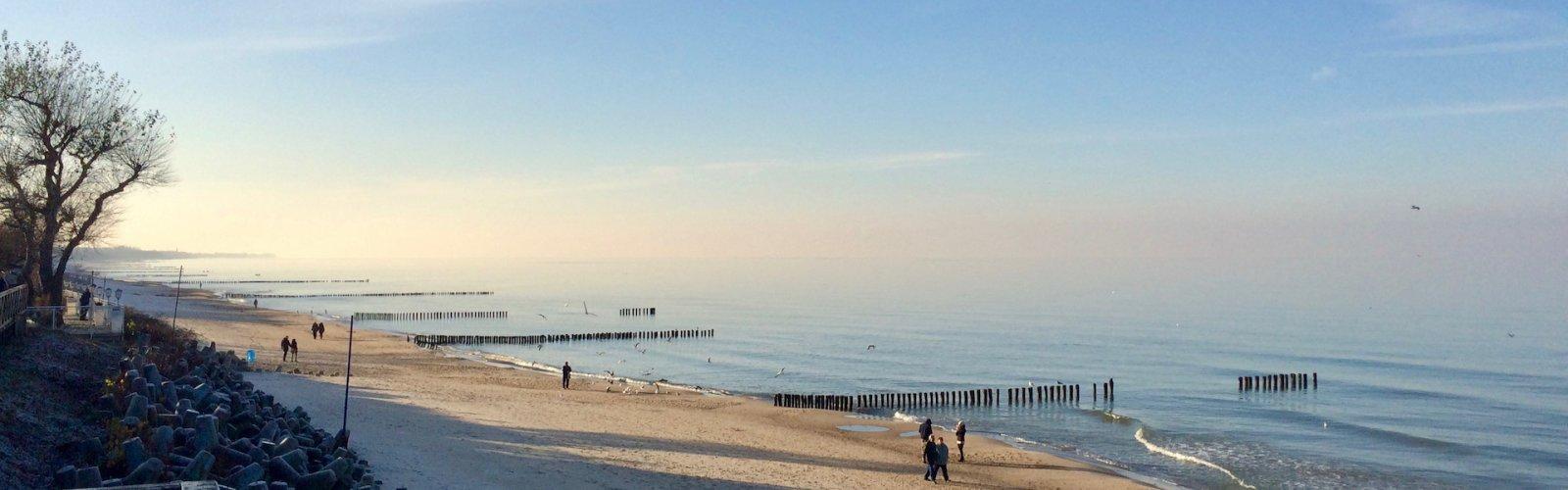 Pakiet z okazji MZM 2020 - Międzynarodowy Zlot Morsów w Mielnie
