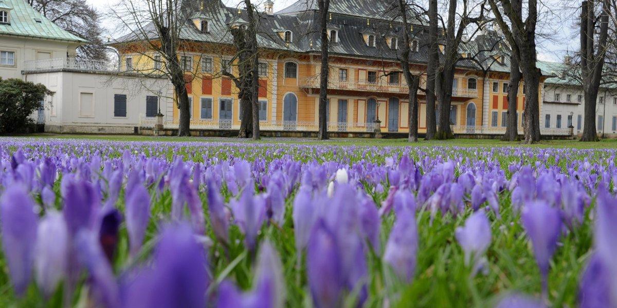 Ostern in Pillnitz mit 3 Übernachtungen