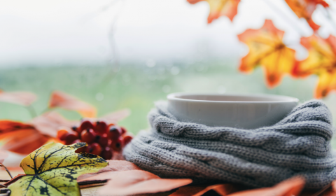 Abschied vom Sommer –Willkommen im Herbst