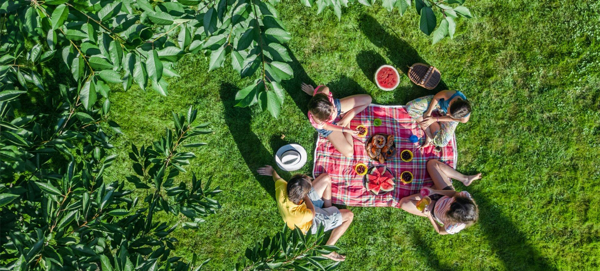 Natura & relaks nad Jeziorem Zegrzyńskim